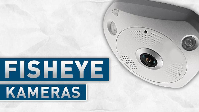 Fisheye-FAQ-IP-Netzwerk-Kameras-Grafiken
